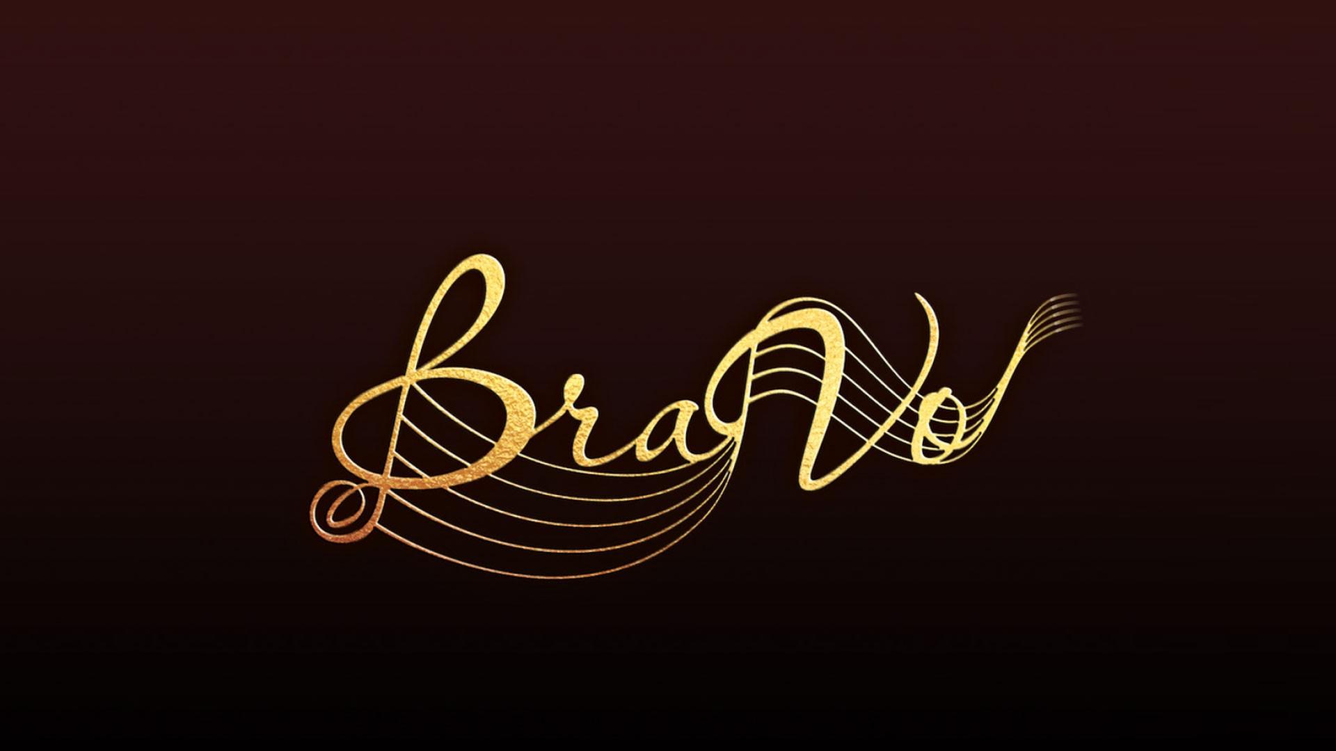 Первая церемония вручения Международной профессиональной музыкальной премии «BraVo» в области популярной музыки